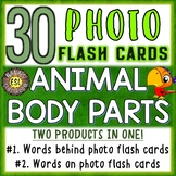 Animal Body Parts Photo Flash Cards