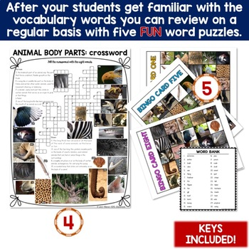 Animal Body Parts 5 Word Puzzles and 30 Photo Flash Cards BUNDLE