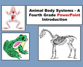 Animal Body Systems - A 4th Grade PowerPoint Introduction