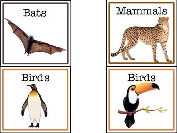Animal Book Bin Labels