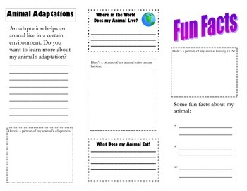 Animal Brochure Template for Expository Text