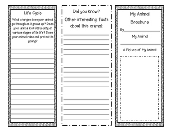 Animal Brochure {Works with any Nonfiction Text!}