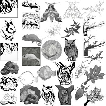 Animal Camouflage Clip Art