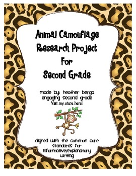 Animal Camouflage Research Project