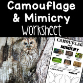 Camouflage and Mimicry Worksheet • Science Review Activity