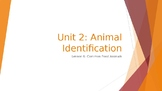 Animal Care Assistant - Animal Identification - Common Food Animals