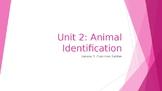 Animal Care Assistant - Animal Identification - Common Ratities