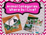 Animal Categories and WH Questions