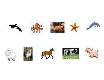 Animal Categorizing (farm, zoo, ocean)
