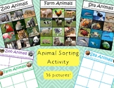 Animal Category Sorting Activity Sea Zoo and Farm Animals Autism Special Needs