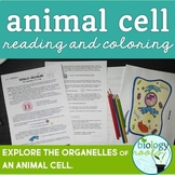 Animal Cell Reading and Coloring