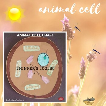 Animal Cell Craft