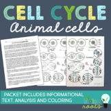 Cell Cycle Mitosis Reading and Coloring Activity or Homework