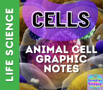 CELLS: Animal Cell Graphic Notes!