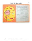 Animal Cell Model and Quiz  Ce-5