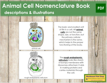 Animal Cell Nomenclature Book