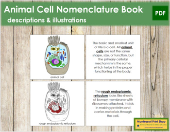 Animal Cell Nomenclature Book (Red)