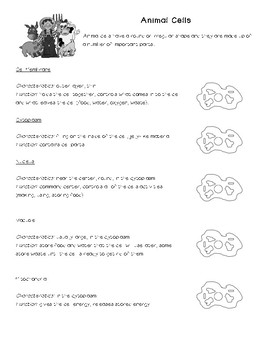 Animal Cell Notes