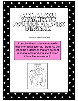 Animal Cell Organelles Journal Graphic