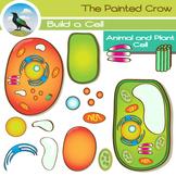 Animal Cell & Plant Cell Clip Art - 28 Piece Set - Color & Blackline Graphics