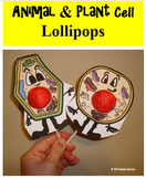 Animal Cell & Plant Cell Lollipops