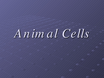 Animal Cell power point