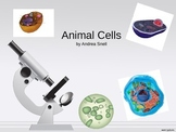 Animal Cell PowerPoint with Interactive Notetaking