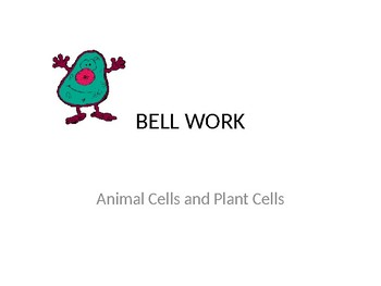 Animal Cell and Plant Cell