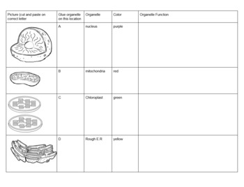 Animal Cell and Plant Cell Organelle Cut + Paste Activity -- Location + Function