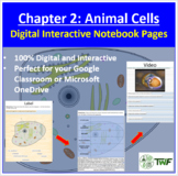 Animal Cells - Digital Interactive Notebook Pages