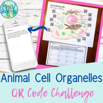 Animal Cells Eukaryotic Organelles QR Code Challenge