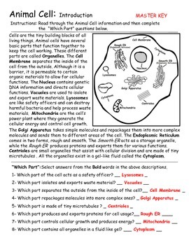 Animal Cells - Introduction and Diagram Activities