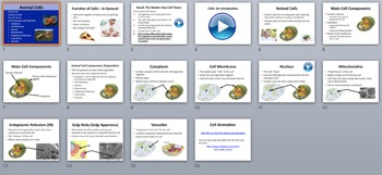 Animal Cells - PowerPoint Lesson and Student Notes Package