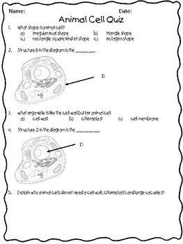 Animal Cells Quizzes- 4 total