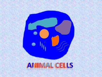Animal Cells   owens3Ps