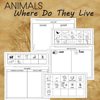 Animal Themed Word Work
