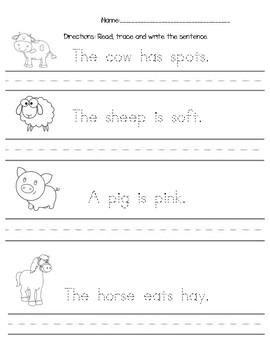 Animal Center Writing