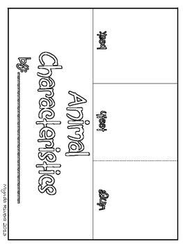 Animal Characteristics (English & Spanish)