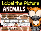 Animals Label the Picture (Characteristics, Oviparous, Adult/Baby)