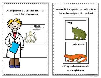 Animal Characteristics {Reader Bundle Set} Kindergarten & First Grade Science