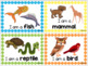 Animal Characteristics Sort