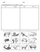 ANIMAL CHARACTERISTICS Test & Sort - English and Spanish