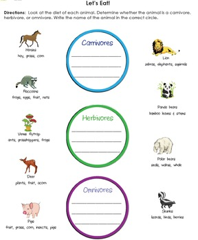 Animal Characteristics | Types/Groups, Types of Eaters