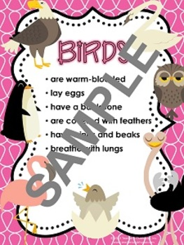 Animal Characteristics Unit