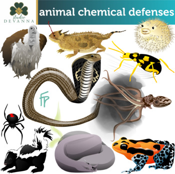 Animal Chemical Defenses Clip Art
