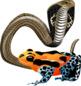Animal Chemical Defenses Clip Art