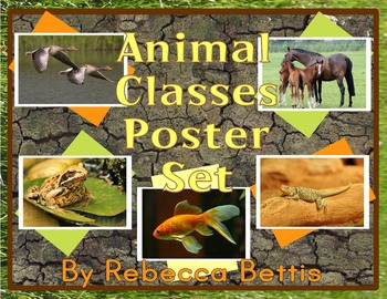 Animal Classes: Full Color and Black-and-White Poster Set