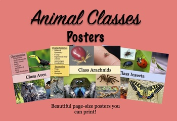 Animal Classes Poster for Classroom/Lab