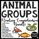 Animal Classes Reading Comprehension Bundle Animal Groups Types of Animals