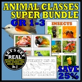 Animal Classes for Grades 1-3: Amazing Animals SUPER Bundle